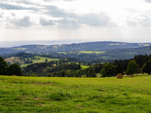 Grass and white cloudy sky, natural panorama. Fresh green grass and white cloudy sky, natural panorama with mountains on horizon and framed by trees, copyspace Stock Image