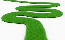 Grass winding road Stock Photography