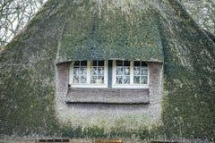 Grass window hobbit movie style Stock Image