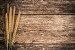 Grass on wood background vintage color tone Stock Image