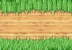 Grass, Wood Frame With The Background Royalty Free Stock Image