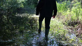 Grass wooded swamp man. Naturalist looking around dense grass wooded swamp wade with rubber boots stock video footage