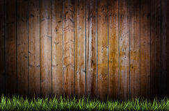 Grass on a wooden background Royalty Free Stock Photo