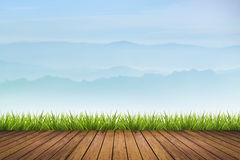 Grass on wooden floor and mountain background Royalty Free Stock Photos