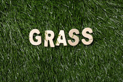 Grass Wooden Sign On Grass Royalty Free Stock Photos