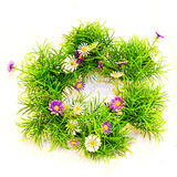 Grass wreath Stock Photo