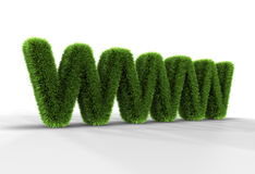 Grass WWW Letters. Grass letters WWW isolated on white background, 3D rendering Stock Photos
