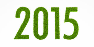 2015 grass year Stock Photo