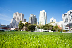 Grass in Yerba Buena Gardens park during day Royalty Free Stock Photo