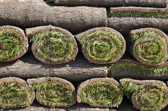 Grasscholle-Hintergrund Lizenzfreies Stockbild