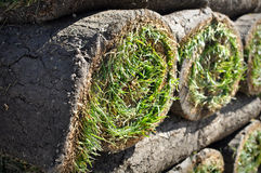 Grasscholle-Hintergrund für neues Haus stockbild