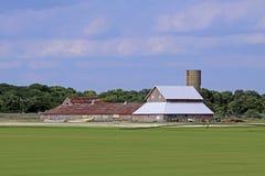 Grasschollebauernhof Stockbilder