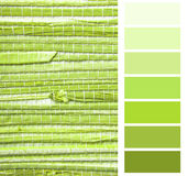 Grasscloth wallpaper color chart. Palette swatches stock photo