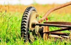 Grasscutter Lizenzfreie Stockfotos