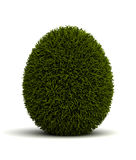 Grassed Egg Royalty Free Stock Images