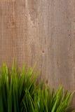 Grassen op hout Stock Fotografie