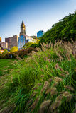 Grasses and the Custom House Tower in Boston, Massachusetts. Stock Photos