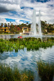 Grasses and a fountain in Echo Park Lake,  Royalty Free Stock Image