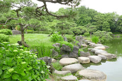 Grasses, stone bridge and water pond in Japanese zen garden Royalty Free Stock Photos