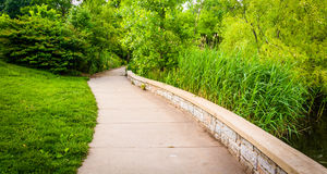 Grasses and trees along a path through Patterson Park, Baltimore Stock Photos