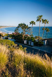 Grasses and view of houses along the Pacific Ocean, in Malibu, C. Alifornia Stock Photography