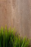 Grasses on wood Stock Photography