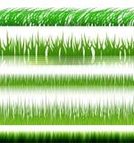 Grasset Lizenzfreies Stockfoto
