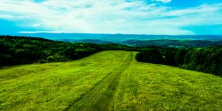 Grassfield стоковое фото rf