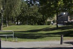 Grassfield Στοκ εικόνες με δικαίωμα ελεύθερης χρήσης
