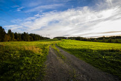 Grassfield. And farmroad in Ogndal not far from Steinkjer, Norway Stock Photo