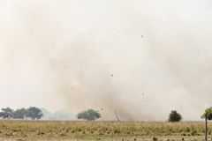 Grassfire in Sudan Royalty Free Stock Photo
