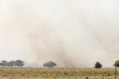 Grassfire in Sudan Royalty Free Stock Photo