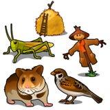 Grasshopper, ποντίκι, σπουργίτι, σκιάχτρο και θυμωνιά χόρτου Έντομα, ζώα στη γεωργία Φυσικά πέντε εικονίδια που απομονώνονται απεικόνιση αποθεμάτων