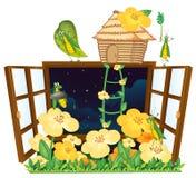 Grasshopper, bird house and window Royalty Free Stock Photos