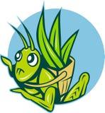 Grasshopper carry basket leaves Stock Photos