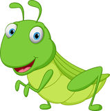 Grasshopper cartoon Royalty Free Stock Photography