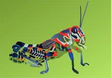 Grasshopper. Colorful exotic grasshopper in green stock illustration