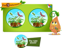 Grasshopper 9 differences. Visual game for children and adults. Task to find 9 differences in the summer illustration  with  forest insects Stock Images