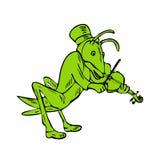 Grasshopper Fiddler Drawing vector illustration