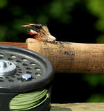 Grasshopper Fishing Fly Royalty Free Stock Images