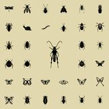 grasshopper icon. insect icons universal set for web and mobile vector illustration