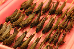 Grasshopper Kabobs, Beijing Stock Photography