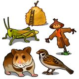 Grasshopper, mouse, sparrow, scarecrow and haystack. Insects, animals in agriculture. Natural five icons isolated. Grasshopper, mouse, sparrow, scarecrow and Stock Photography