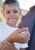 Grasshopper sits on  boy's arm Royalty Free Stock Image
