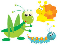 Grasshopper, snail and caterpillar Royalty Free Stock Photo