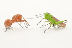 Grasshoppers and ants fantasy Royalty Free Stock Photography
