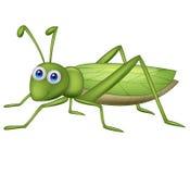 Grasshoppher-Karikatur Lizenzfreies Stockfoto