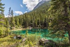 Grassi jezioro Zdjęcie Stock