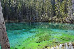 Grassi Lakes. Beautiful Grassi Lakes near Canmore, Alberta, Canada in the Canadian Rockies Stock Photos