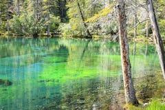 Grassi sjöar Fotografering för Bildbyråer